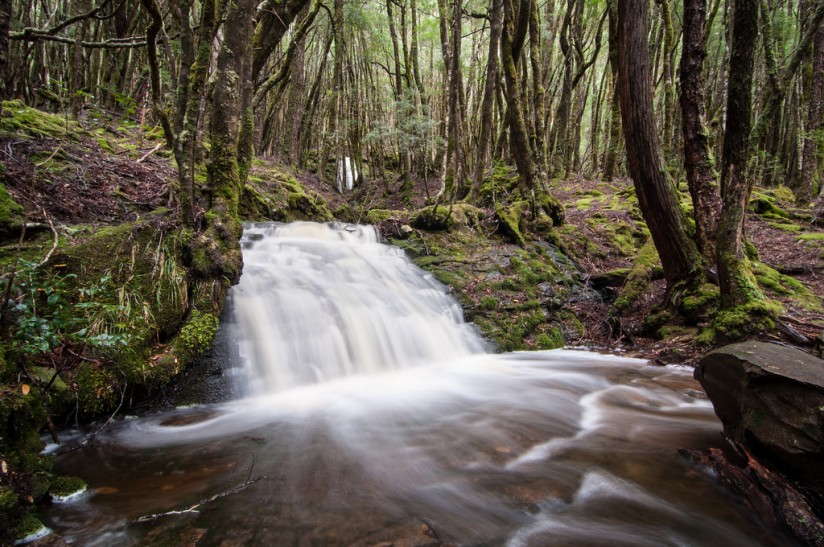 Upper D'Alton Falls, The Overland Track
