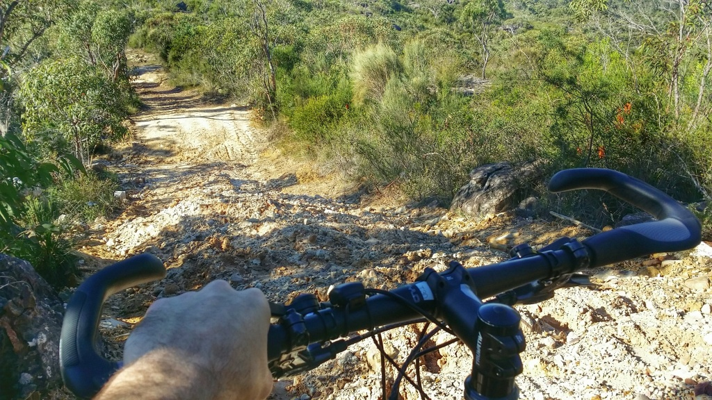 A gnarlier-than-reckoned-on descent on the Waratah Track.