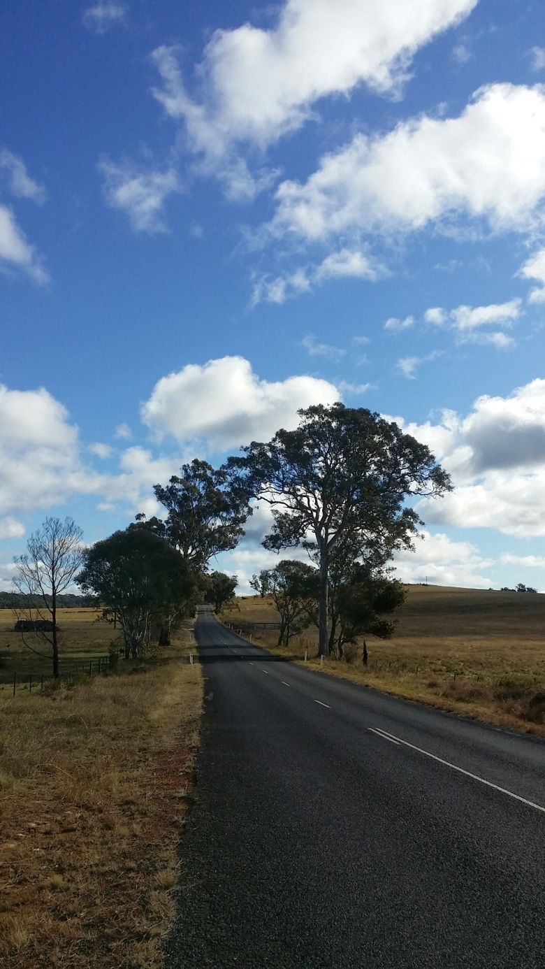 Blue skies above the first kilometres of Wombeyan Caves Road.